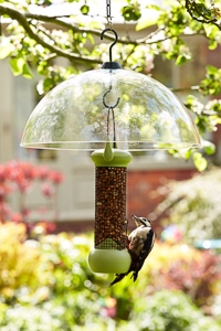 Loktop Bird Feeders & Squirrel Baffles